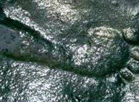 Impronta umana fossile di 290 milioni di anni fa lascia perplessi