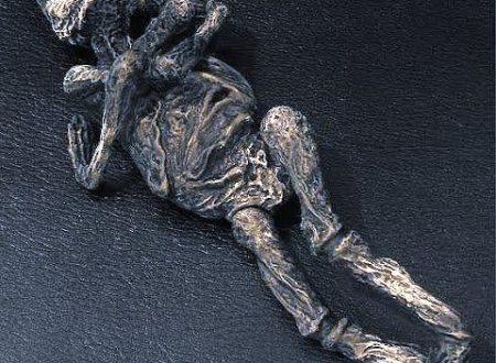 Che fine ha fatto Alyoshenka la piccola mummia aliena?