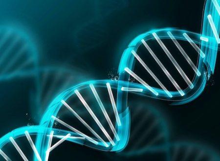 Il nostro DNA sta mutando secondo la scienza