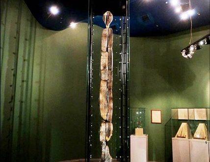 Shigir Idol ed il suo messaggio indecifrabile di 11 mila anni fa