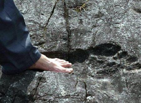 La vita sulla Terra esisteva già milioni di anni fa