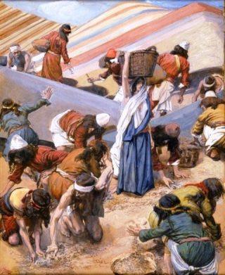 Raccolta della manna