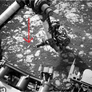 Mars Curiosity Rover e bottiglia
