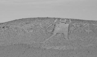 Gigante di Atacama - Chile