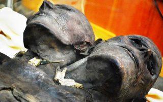 Mummia Kap-Dwa