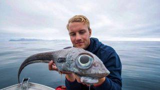 Pesce raro preistorico 1