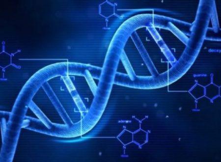 Dettagli inspiegabili del DNA umano e possibili origini